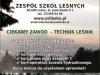 rollup1-1200x2000-zsl-lesko-2016